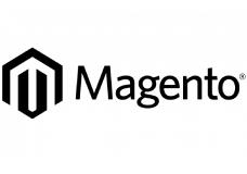 magento website development oao india