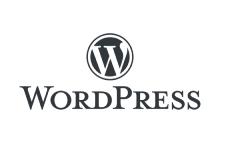 wordpress website development oao india
